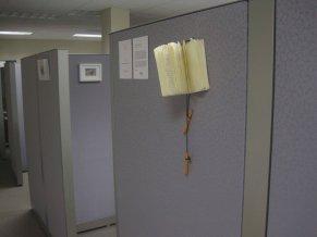 office photos-1