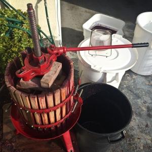 Chris's wine making -1